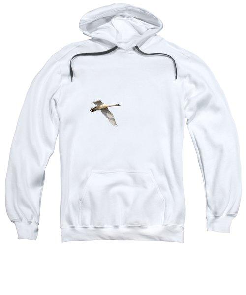 Trumpeter Swan Isolated 2018-1 Sweatshirt