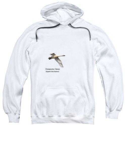Trumpeter Swan Isolated 2018-2 Sweatshirt