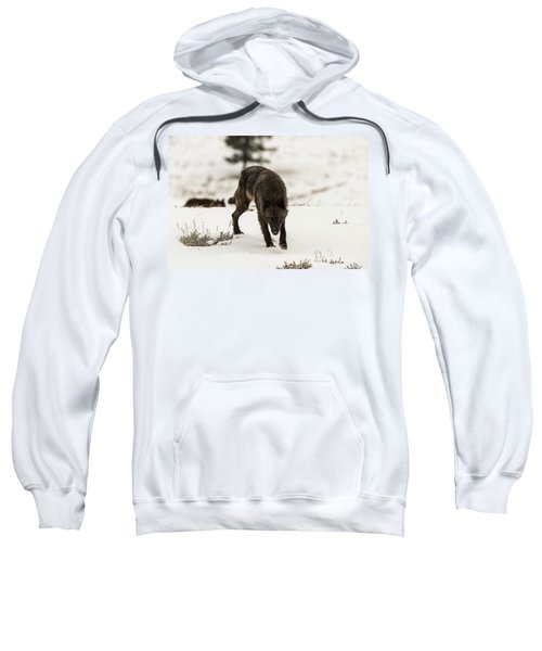 W45 Sweatshirt