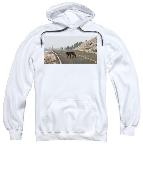 W55 Sweatshirt