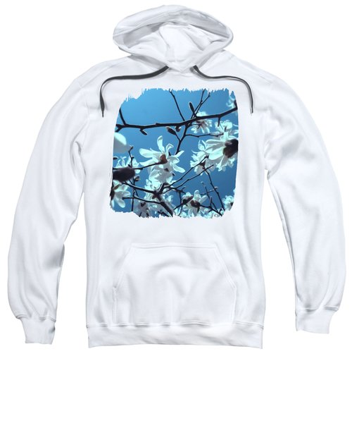 White Magnolia Bloom Blue Sky Sweatshirt