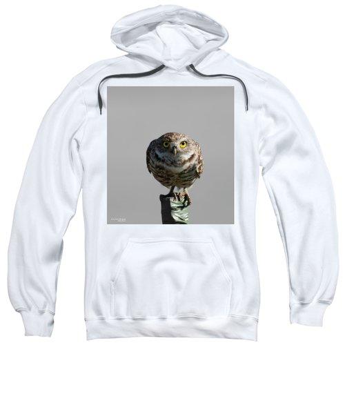 Whooo Are You Sweatshirt