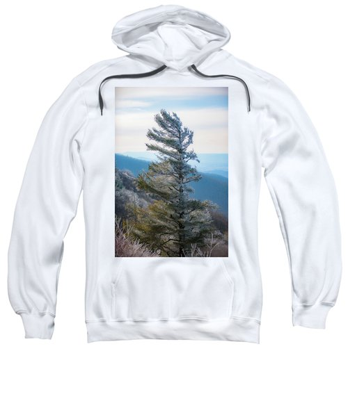 Wind Shaped Sweatshirt