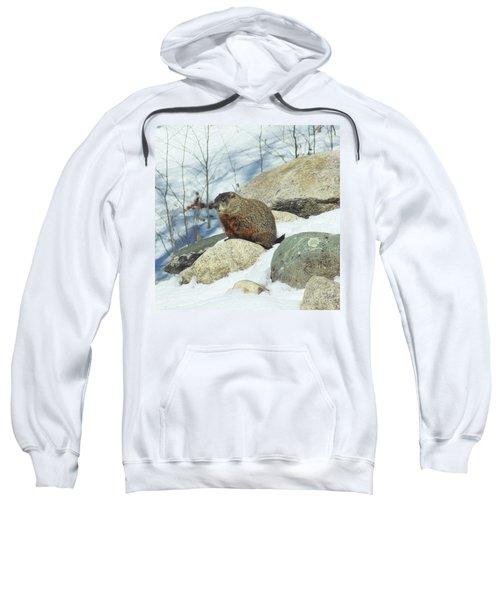 Winter Groundhog Sweatshirt