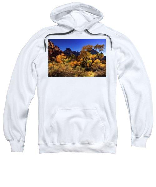 Zions Beauty Sweatshirt