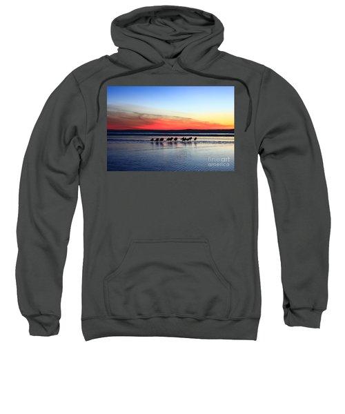 Shorebird Sunset Sweatshirt