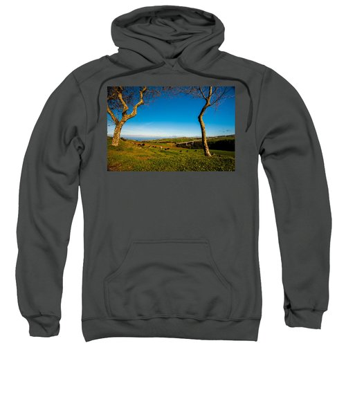 Sweatshirt featuring the photograph Between Two Trees by Joseph Amaral