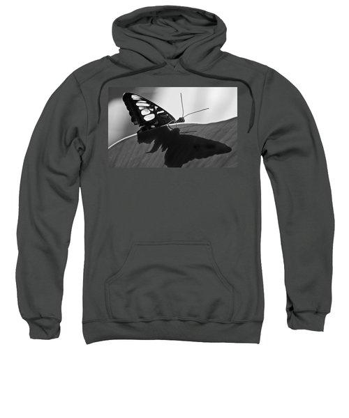 Butterfly II Sweatshirt