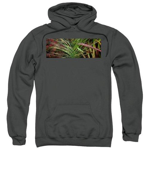 Dew Drops On Grass Sweatshirt