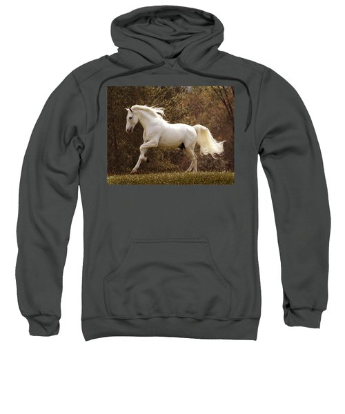 Dream Horse Sweatshirt