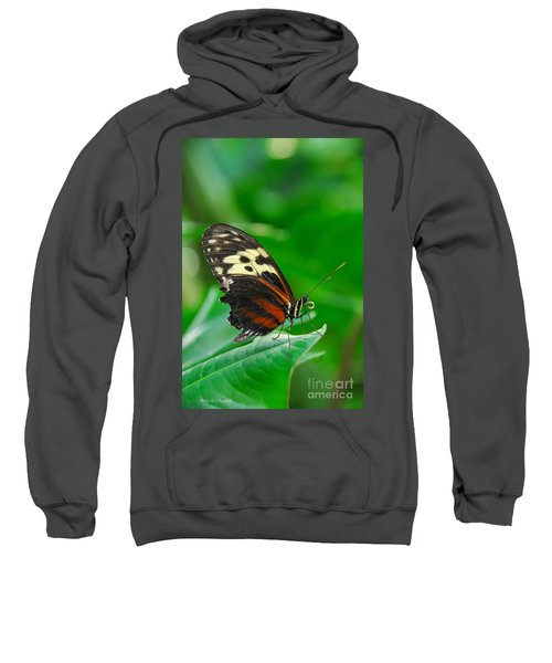 D5l15 Butterfly At Franklin Park Conservatory Sweatshirt