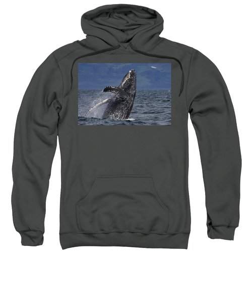 Humpback Whale Breaching Prince William Sweatshirt