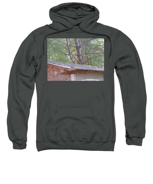 Nature Camera Sees What Eyes Can T  Buy Faa Print Products Or Down Load For Self Printing Navin Josh Sweatshirt