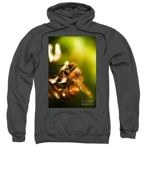 Process Of Pollination Sweatshirt