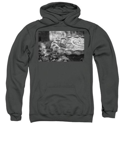 Tennessee Birdbath Sweatshirt