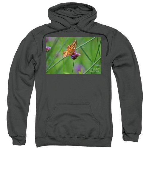 Variegated Fritillary Butterfly In Field Sweatshirt