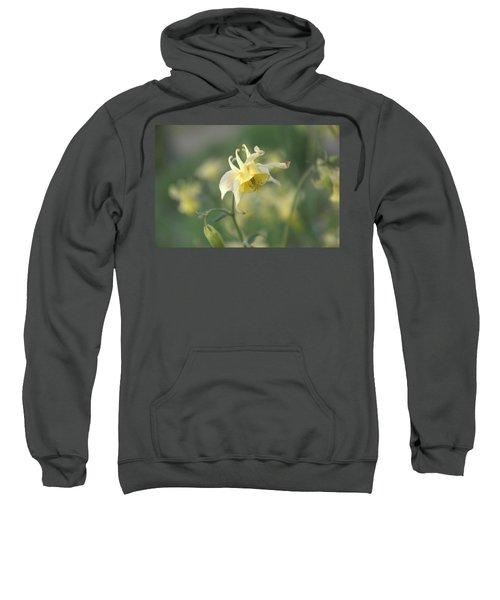 Yellow Columbine Sweatshirt