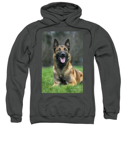 101130p022 Sweatshirt