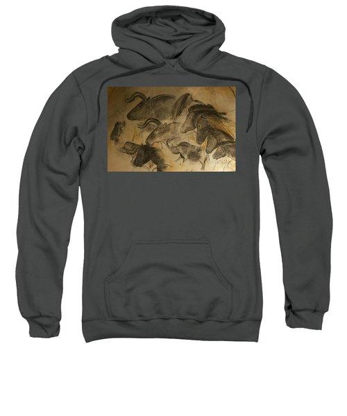 131018p051 Sweatshirt