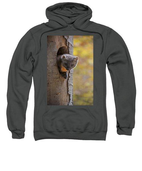 131114p020 Sweatshirt
