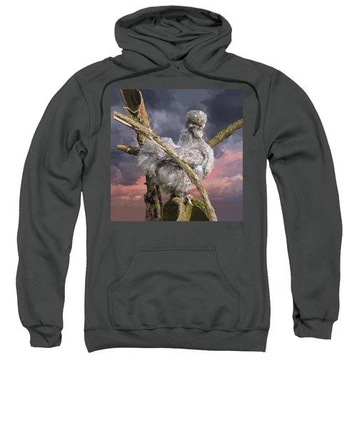 14. Cuckoo Bush Sweatshirt