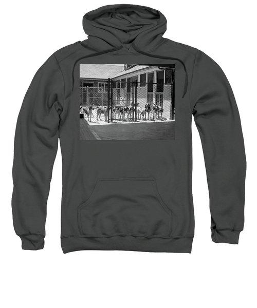 1930s Kennel Yard Full Of Foxhound Dogs Sweatshirt