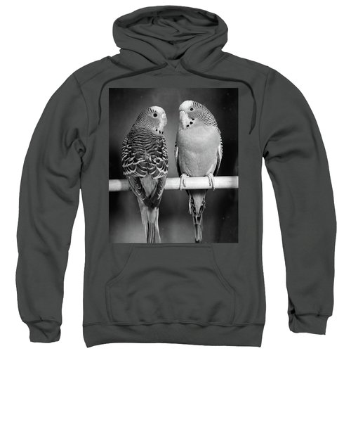 1960s Pair Of Parakeets Perched Sweatshirt