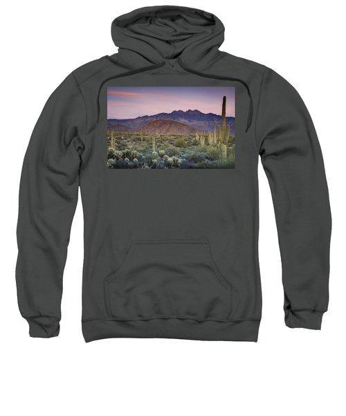 A Desert Sunset  Sweatshirt