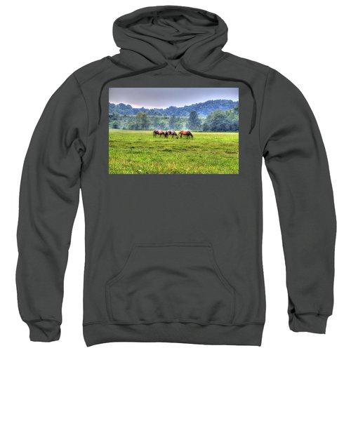 Horses In A Field Sweatshirt by Jonny D