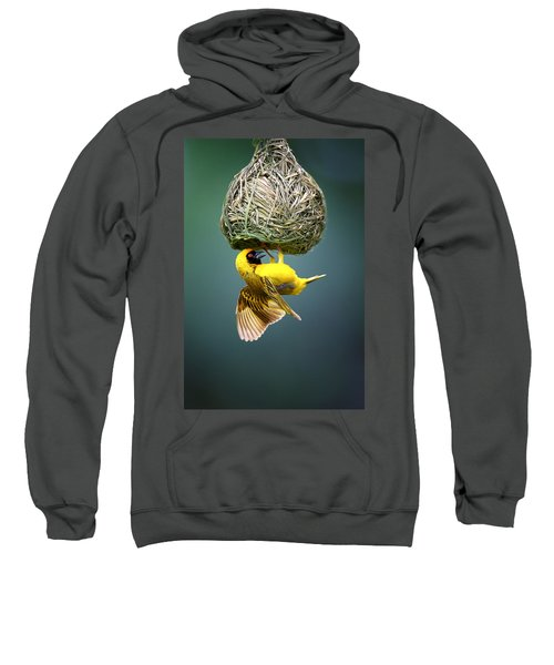 Masked Weaver At Nest Sweatshirt