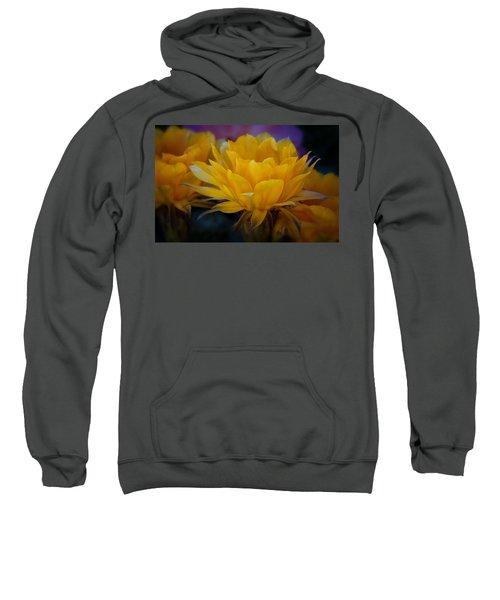 Orange Cactus Flowers  Sweatshirt