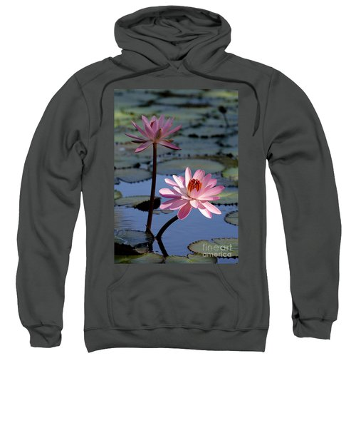 Pink Water Lily In The Spotlight Sweatshirt