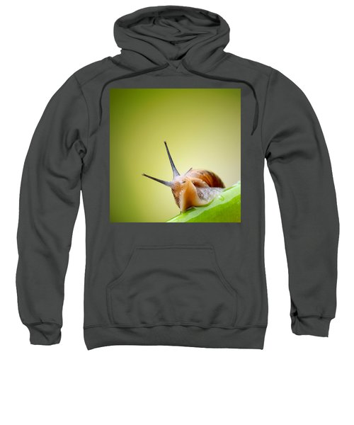 Snail On Green Stem Sweatshirt
