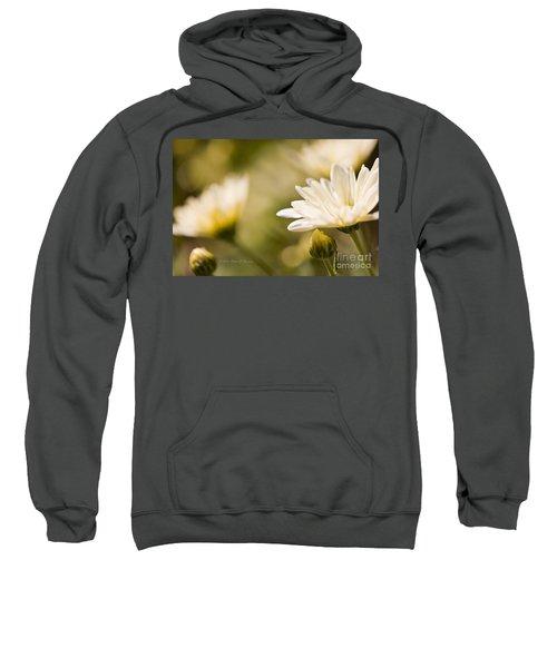 Chrysanthemum Flowers Sweatshirt