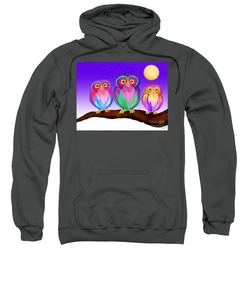 3 Little Owls In The Moonlight Sweatshirt