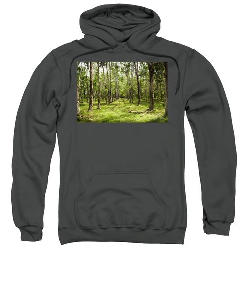 Rubber Plantation Sweatshirt