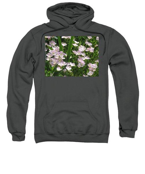 Camera Peak Thru Nature Buy Faa Print Products Or Down Load For Self Printing Navin Joshi Rights Man Sweatshirt