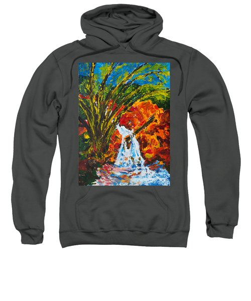 Burch Creek Waterfall Sweatshirt