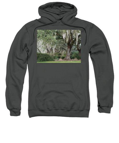 Spanish Moss Sweatshirt