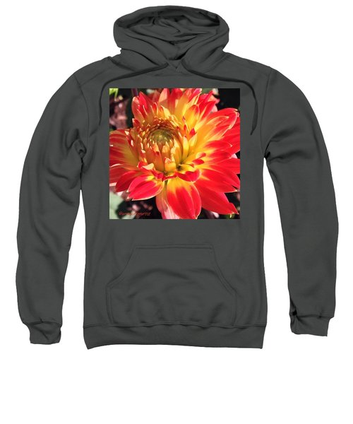 A Burst Of Fall Color Sweatshirt
