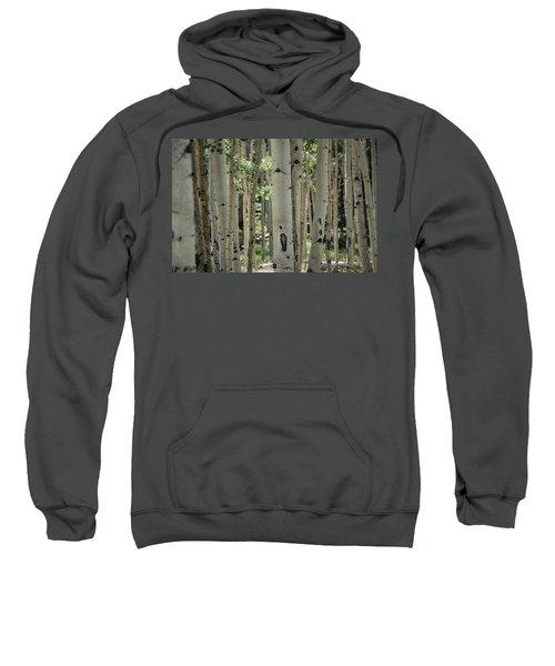 A Change Of Weather  Sweatshirt
