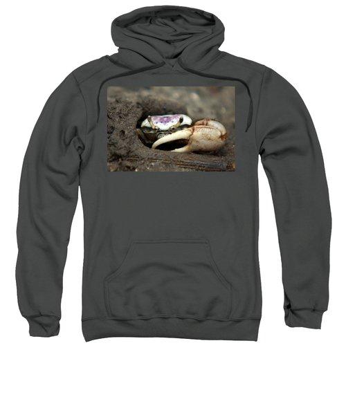 A Fiddler Crab Around Hilton Head Island Sweatshirt