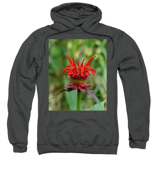 A Flowering Red Castle Beauty Sweatshirt
