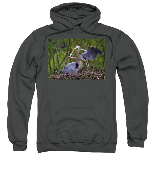 A Gift For The Nest Sweatshirt