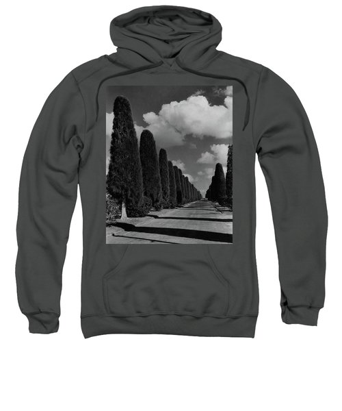 A Street Lined With Cypress Trees Sweatshirt