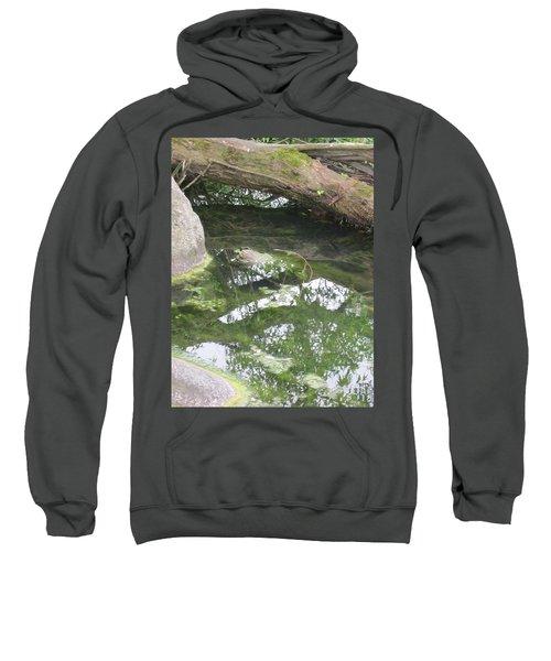 Abstract Nature 3 Sweatshirt