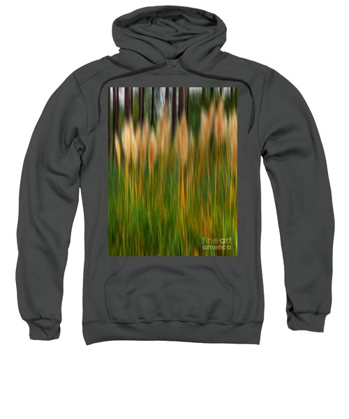 Abstract Of Movement Sweatshirt