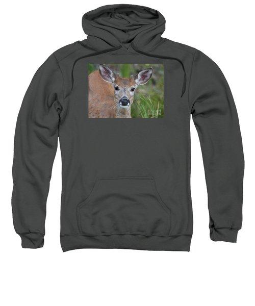 Adolescent Curiosity Sweatshirt
