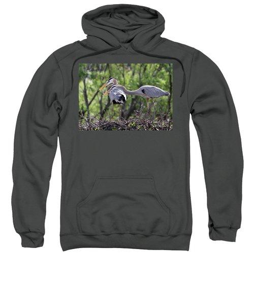 Affectionate Great Blue Heron Mates Sweatshirt