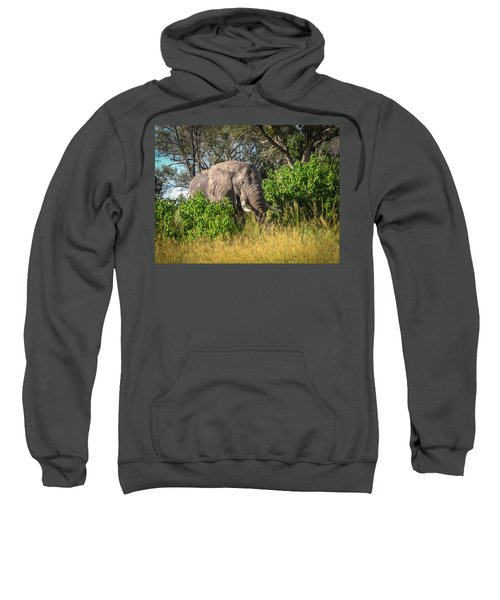 African Bush Elephant Sweatshirt